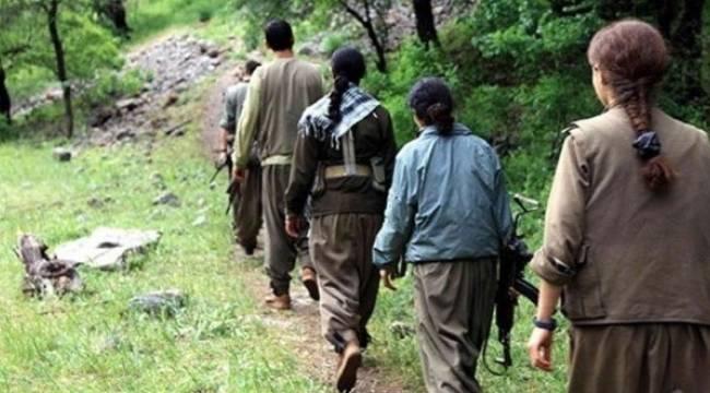 Urfa ve Antep'te Eylem hazırlığındaki 8 terörist yakalandı