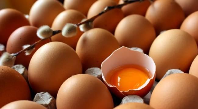 23 kuruşa mal edilen yumurtayı 16 kuruşa satıyorlar