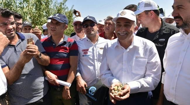 Bakan Fakıbaba, Kahta'da Badem Hasat Şenliği'ni başlattI