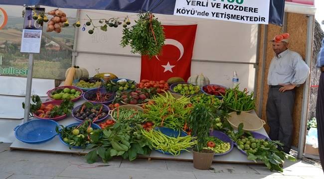 Bursa Biber Festivali Urfa Sıra Geceleri ile Başlayacak