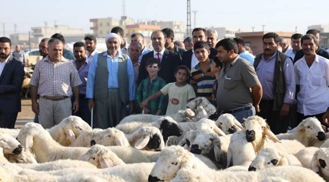 Çiftçi hayvan pazarında satıcıları dinledi-Videolu Haber
