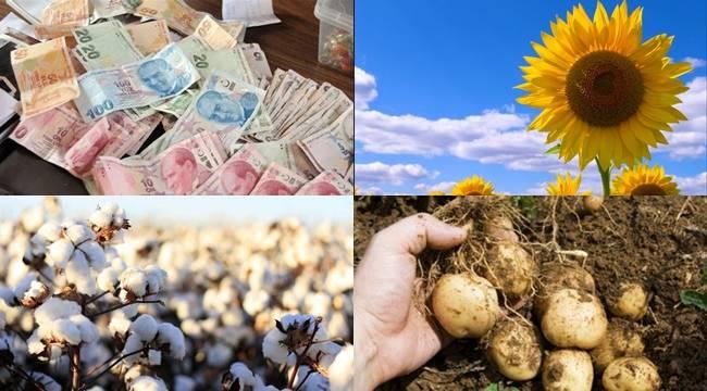 Şanlıurfa'da Hangi Ürünlere Destekleme verilecek