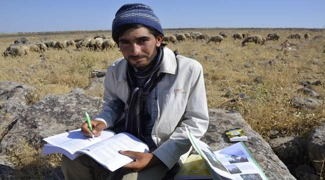 Urfa'da Çobanlıktan üniversiteye uzanan yaşam öyküsü