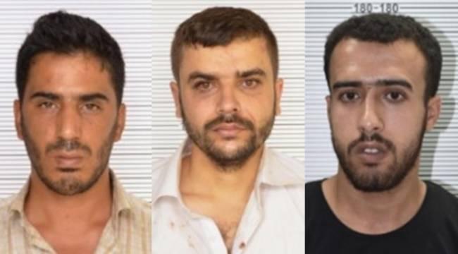 Urfa'da Deaş'ın infaz timi yakalandı - Video Haber