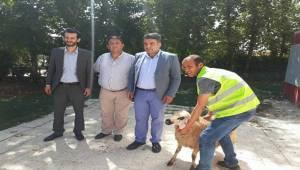 Urfa'nın Ülkücü Şehit Aileleri Bayramda Unutulmadı