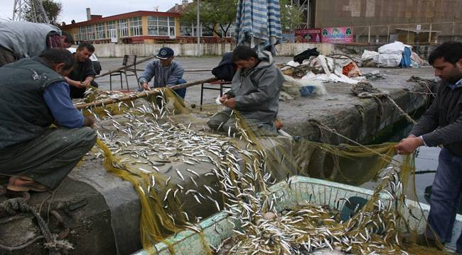 Fakıbaba, Kıyı Balıkçılığı Destekleme kapsamına alındı