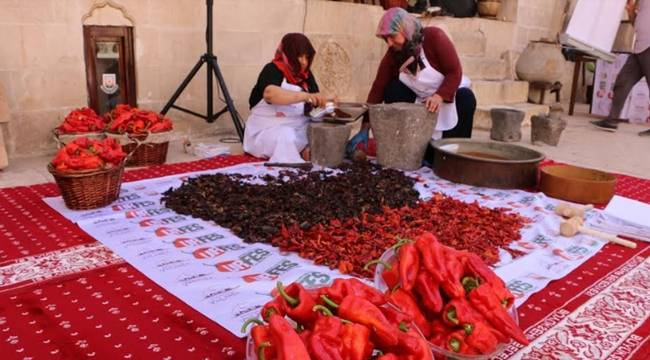 İsot Festivali Tarladan Sofraya Serüveni İle Devam Etti-Videolu Haber