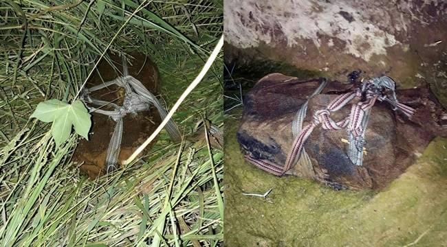 Şanlıurfa'da 2 bin adet Keleş mermisi bulundu
