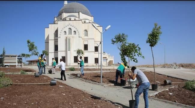 Seyrantepe Mahallesi Yeşil Alana Kavuşuyor-Videolu Haber