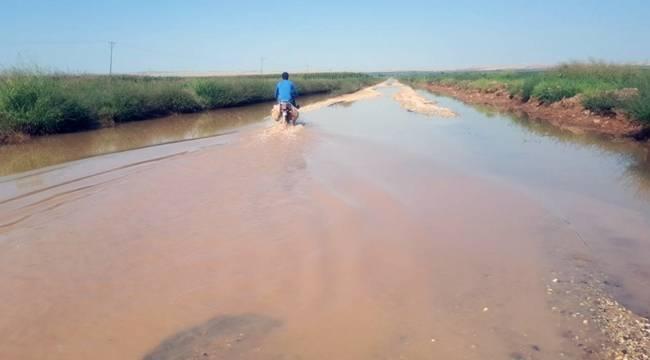 Suruç'ta bir çok köyü su basmış durumda