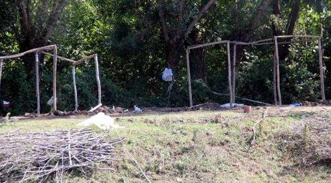 Urfalı Tarım İşçilerinin Kaldığı Çadıra Ateş Açıldı, 1 Ölü, 1 Yaralı