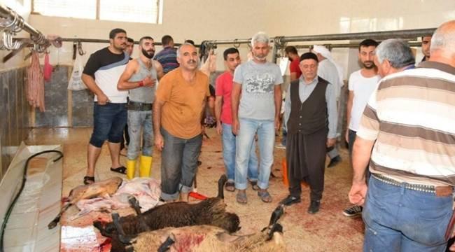 Viranşehir'de Kurban Bayramının 1.Günü Kesim Yerleri Denetlendi