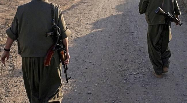 Akçakale'de 2 DEAŞ üyesi yakalandı