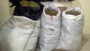 Akçakale ve Sınırda 25 Kilogram Esrar Yakalandı