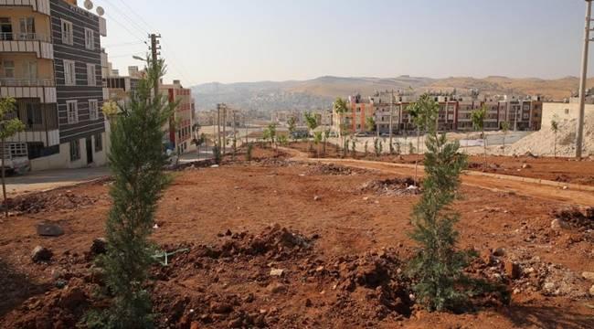 Haliliye'ye Yedi Yeni Park Kazandırılıyor- Videolu Haber