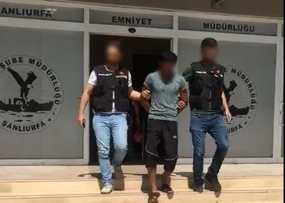 Hırsızlıktan arananlara operasyon: 12 gözaltı