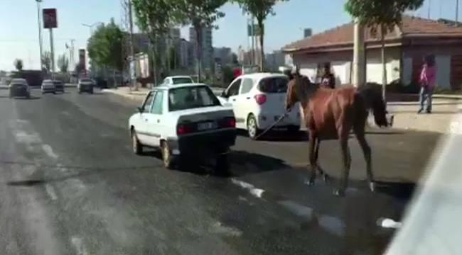 Otomobilin arkasına bağlan at yürek sızlattı