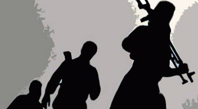 PKK'nın GAP-Rıha ve Viranşehir sorumluları yakalandı