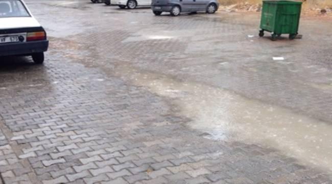 Şanlıurfa'da Mevsimin İlk Yağışı Düştü