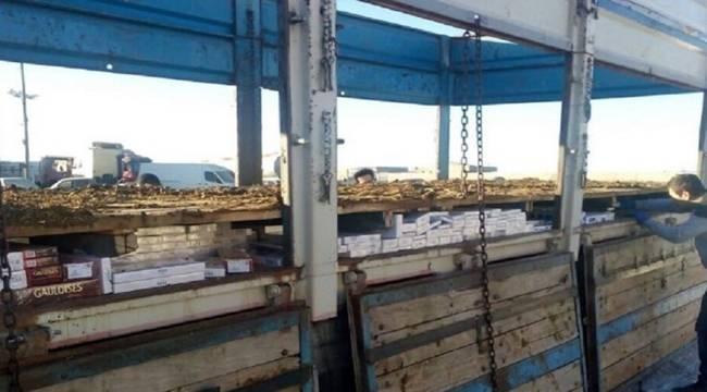 Urfa'da Kaçakçılığa Geçit Yok