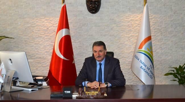 Ahmet Güldal, Müsteşar Yardımcısı Oldu