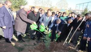 Bakan Yardımcısı Tüfekçi okul bahçesine fidan dikti