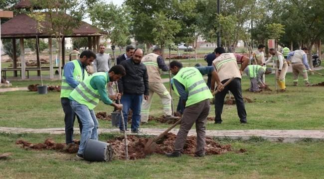 Haliliye'de Yeşil Seferberliği- Videolu Haber
