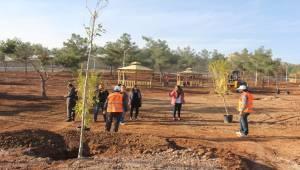Şanlıurfa'yı Seviyorum, Ağacımı Dikiyorum-Videolu Haber