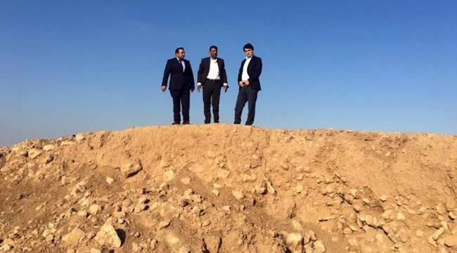 Harran'daki Zeytin Dikim Alanları İncelendi