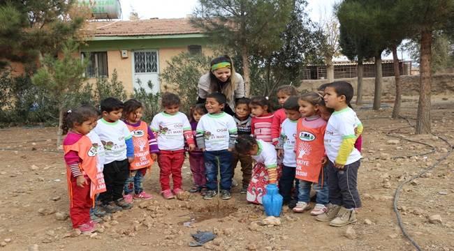 Minik eller okul bahçelerini yeşillendiriyor