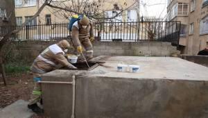 Selahattin Eyyubi'de İlaçlama ve Budama Çalışması-Videolu Haber