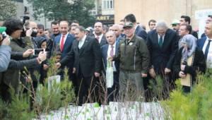 Bakanlar Şanlıurfa'da Fidan Dağıttı