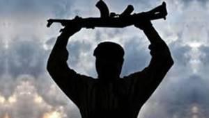 PKK'lı Terörist Silahı İle Birlikte Yakalandı