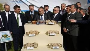 Bakan Fakıbaba, 15 Ülkeye Patates Tohumu İhraç Edeceğiz