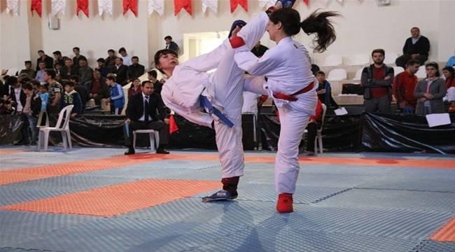Bozova Karate ile Şenlendi