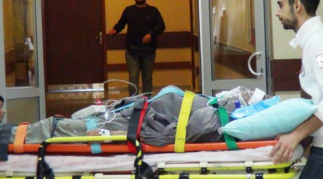 Bozovalı Çiftçi At Arabasında Düşerek Yaralandı