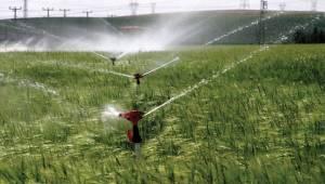 DEDAŞ, Viranşehir Çiftçisini Uyardı