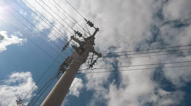 Elektrik Akımına Kapılan Karga, Mahalleyi Elektriksiz Bıraktı