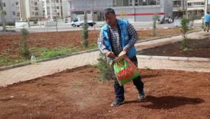 Haliliye'deki Parklarda Mevsimsel Çalışmalar Yapılıyor