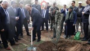 Milli Eğitim Eliyle 2 Milyon Fidan Urfa'mıza Kazandırılabilir