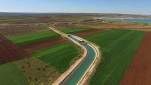 Suruç ve Akçakale Çiftçisine Müjdeli Haber