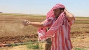 Suruç ve Akçakale'ye Su Bırakılmadı