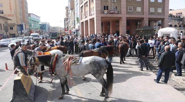 Urfa'da At Arabacılar Eylem Yaptı