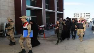 Urfa'da DEAŞ Operasyonu, 9 Gözaltı