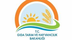 Gıda, Tarım ve Hayvancılık Bakanlığı Personel Sayısı Açıklandı