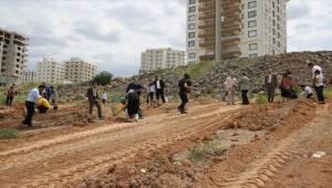 Karaköprü'de 500 Adet Fidan Dikildi