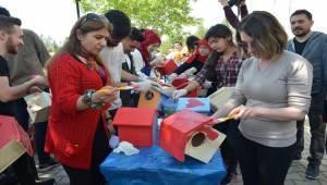 Osmanbey Kampüsü Kuş Cennetine Dönüşecek