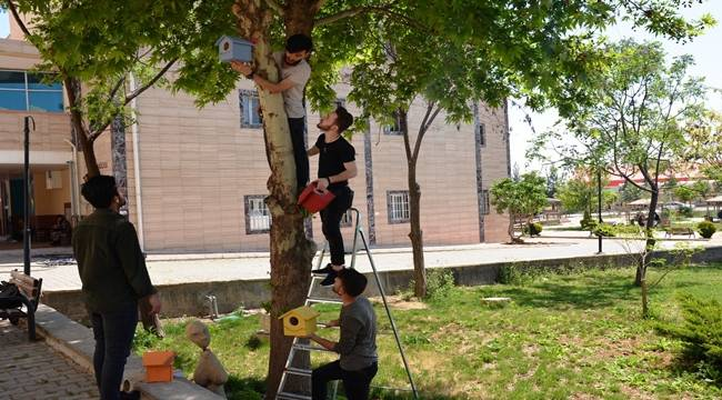 Osmanbey Kampüsü Kuş Cennetine Dönüştü