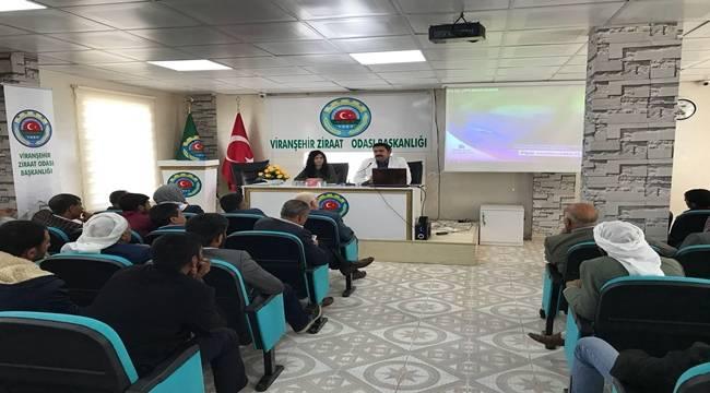 Viranşehir'de Sürü Yönetimi Kursu