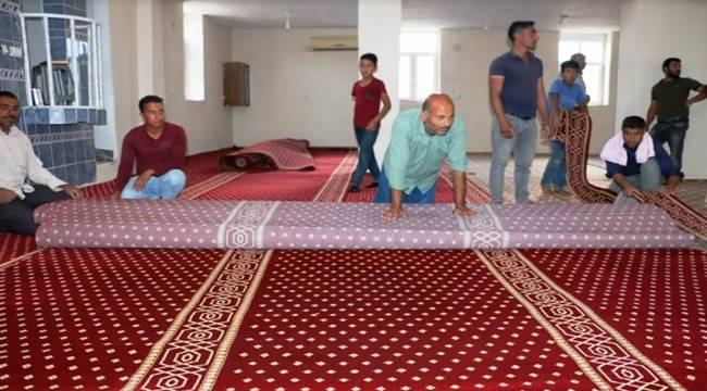 Akçakale'de Camilere Halı Yardımları Devam Ediyor